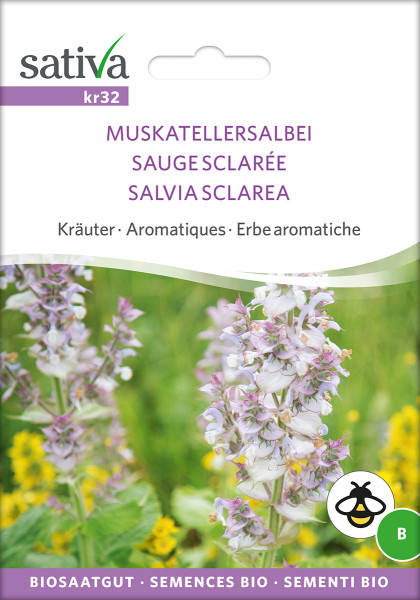 Muskatellersalbei (demeter-Biosaatgut)