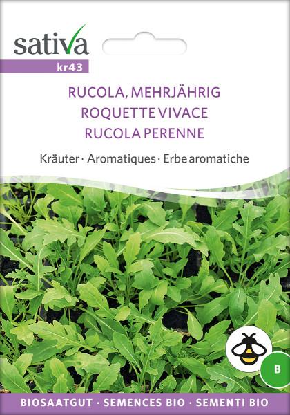 Wilde Rauke - Rucola, mehrjährig (Biosaagut)