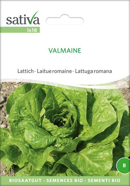 Romanasalat 'VALMAINE' (demeter Biosaagut)