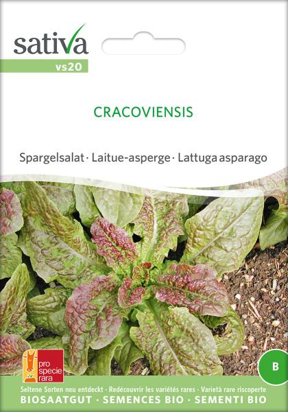 SPARGELSALAT Cracoviensis (demeter Biosaagut /PSR)