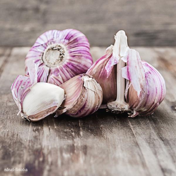 frischer lila Knoblauch aus Südfrankreich · Ail Violette Cadours · (400g)