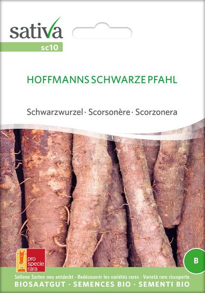 Schwarzwurzel 'HOFFMANN'S SCHWARZE PFAHL' (demeter-Biosaatgut)