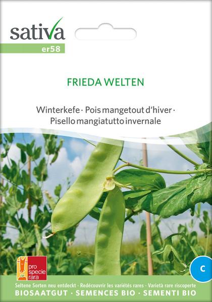 Wintererbsen/Kefen FRIEDA WELTEN (Biosaatgut/PSR)