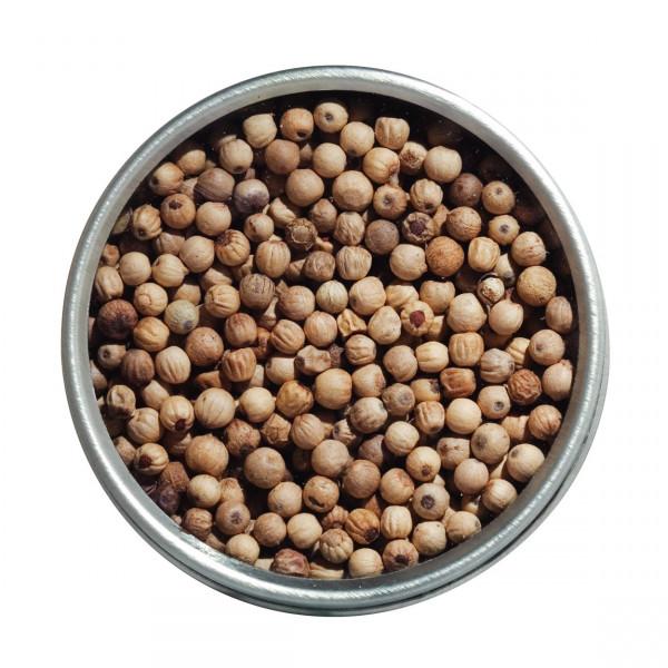 Urwaldpfeffer, weiß, Bio, ganz, aus Kerala