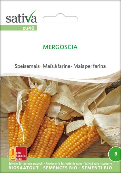 Mais, Speisemais MERGOSCIA (demeter-Biosaatgut/ PSR)