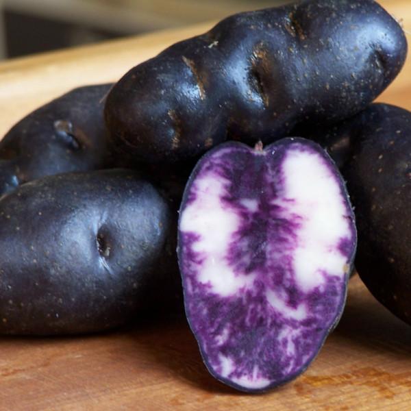 Grenaille Vitelotte, Trüffelkartoffeln (Minisortierung)