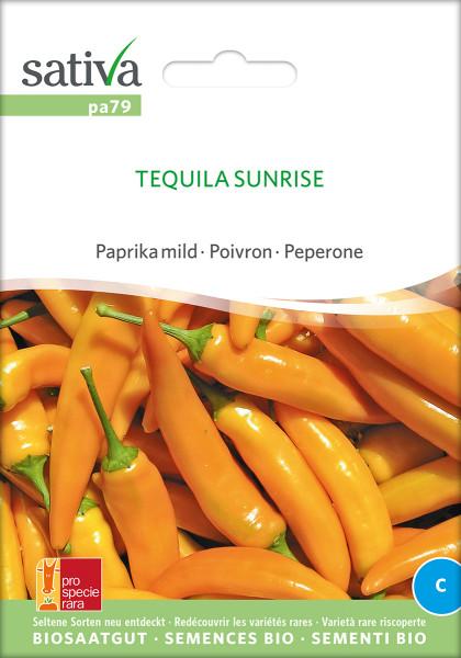 Paprika TEQUILLA SUNRISE (Saatgut demeter/PSR)