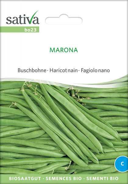Buschbohne 'MARONA' (demeter-Biosaatgut)