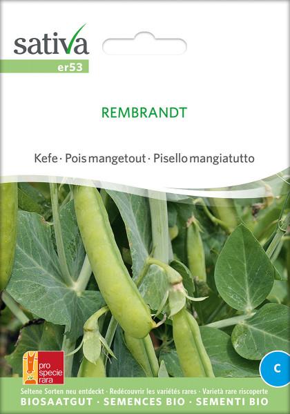 Zuckererbse REMBRANDT (Bio-Saatgut)