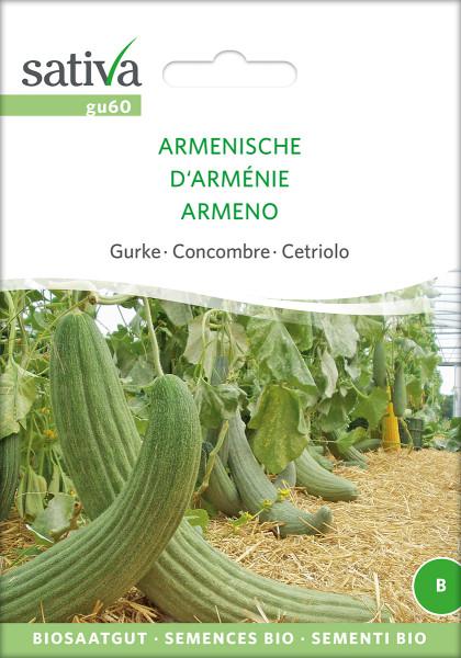 Gurke ARMENISCHE (Bio-Saatgut)