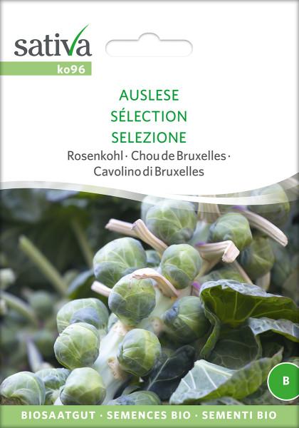 Rosenkohl 'AUSLESE' (demeter-Biosaatgut)