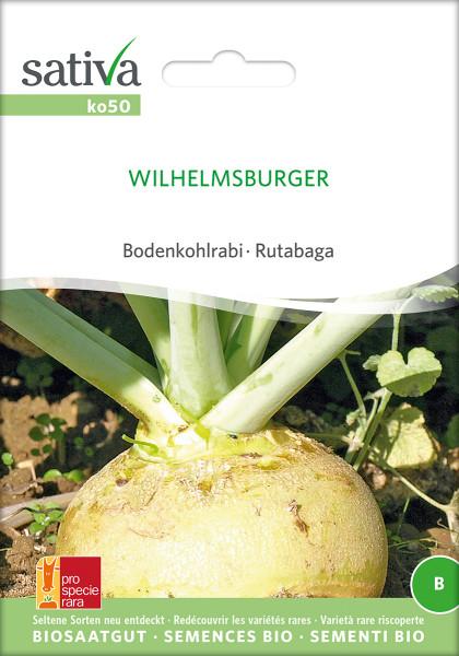 Bodenkohlrabi Wilhelmsburger (Saatgut demeter/PSR)