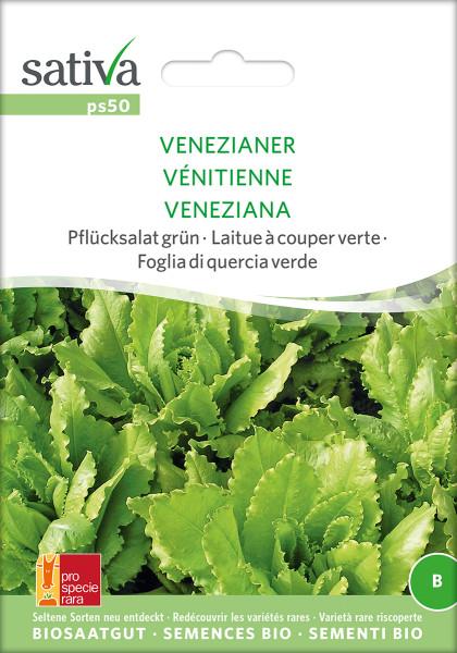 Pflücksalat VENEZIANER (demeter Biosaagut /PSR)