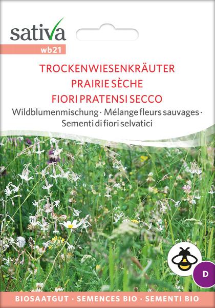 Wildblumenmischung für trockene & sonnige Standorte (Biosaatgut)