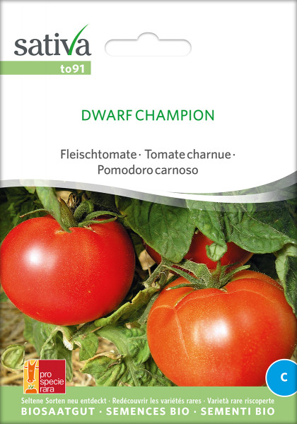 Tomate DWARF CHAMPION (PSR-Sortenrarität)