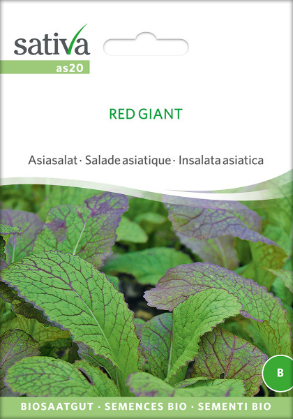 Asia-Salat 'RED GIANT' (demeter-Biosaatgut)