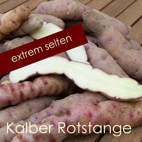 Kalber Rotstange [vf]