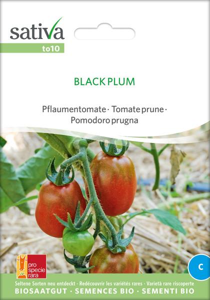 Tomate BLACK PLUM (Bio-Saatgutrarität/ PSR)